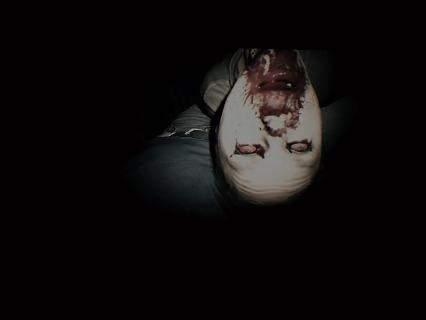 Biohazard_7_teaser_beginning_hou_14
